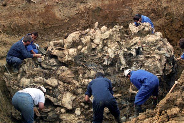 Международное сообщество должно защищать и сохранять братские могилы: Калламард