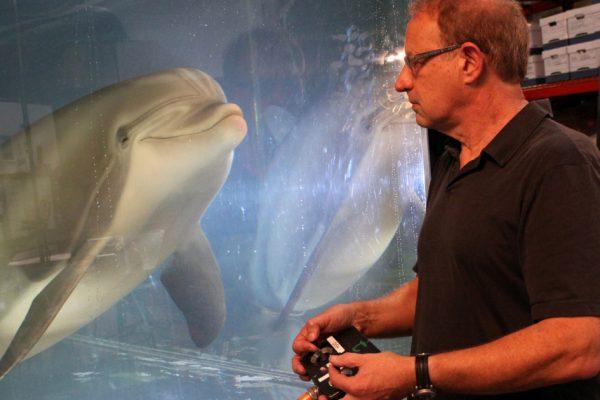 Может ли этот робот-дельфин заменить содержащихся в неволе животных в морских парках?