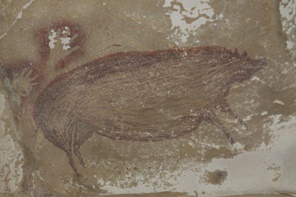 Бородавчатая свинья: самая старая известная в мире наскальная живопись, найденная в Индонезии